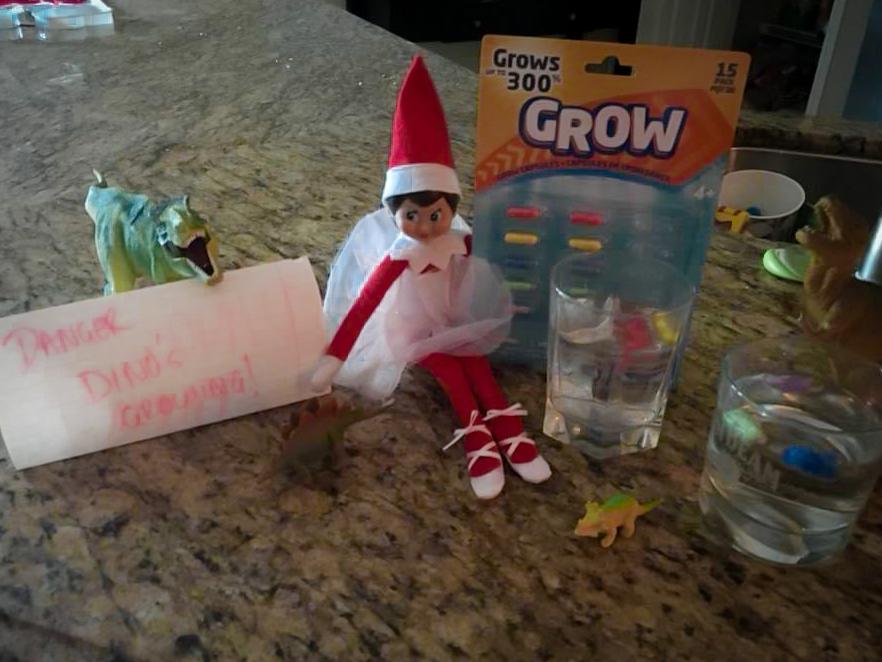 dino grow elf
